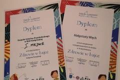 Biedronki-dyplom